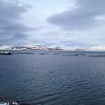 Tromso_Norwegia